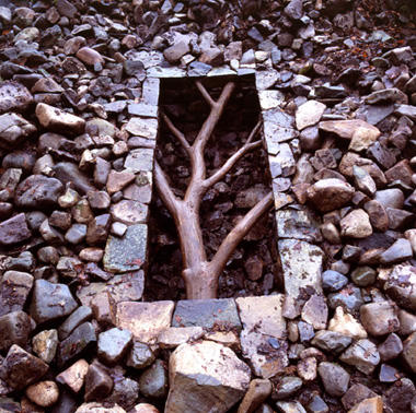 goldsworthy_stone and tree