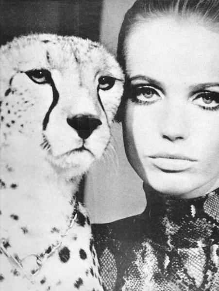 veruschka-cheetah
